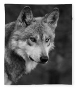 Black And White Mexican Wolf #4 Fleece Blanket