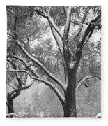 Black And White Snowy Landscape Fleece Blanket