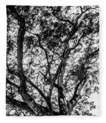 Black And White Tree 2 Fleece Blanket