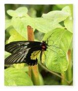 Black And Yellow Butterfly Fleece Blanket