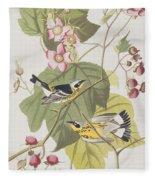 Black And Yellow Warblers Fleece Blanket