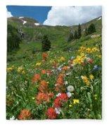 Black Bear Pass Landscape Fleece Blanket