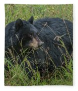 Black Bear Sow Fleece Blanket
