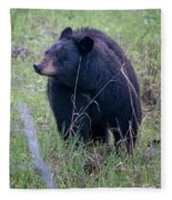 Black Bear Yellowstone Np_grk7085_05222018 Fleece Blanket