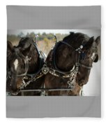 Black Beauties Fleece Blanket