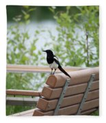 Black-billed Magpie Pica Hudsonia Fleece Blanket