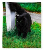 Black Cat Maine Fleece Blanket