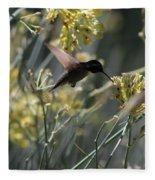 Black Chinned Hummingbird In Flight Fleece Blanket