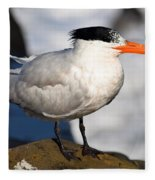 Black Crested Gull Fleece Blanket