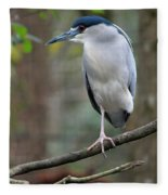 Black Crowned Night Heron IIi Fleece Blanket