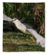 Black-crowned Night Heron In Flight Fleece Blanket