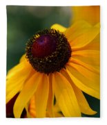 Black Eye Susan Fleece Blanket