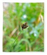 Black Grass Fleece Blanket