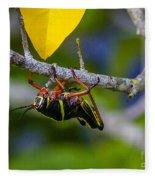 Black Grasshopper Fleece Blanket