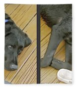 Black Lab - Gently Cross Your Eyes And Focus On The Middle Image Fleece Blanket