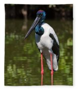 Black-necked Stork Fleece Blanket