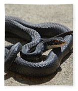 Black Racer Fleece Blanket