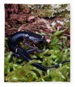 Black Salamander Fleece Blanket