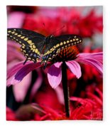 Black Swallowtail Butterfly On Coneflower Square Fleece Blanket