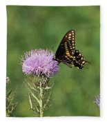 Spicebush Swallowtail Butterfly Fleece Blanket