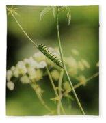 Black Swallowtail Caterpillar Fleece Blanket
