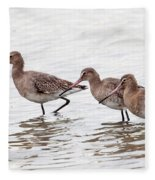 Black-tailed Godwits Fleece Blanket