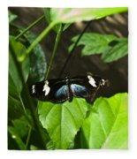 Black Tropical Butterfly Fleece Blanket
