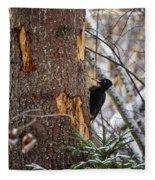 Black Woodpecker Peek Fleece Blanket