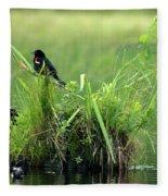 Blackbird Island Fleece Blanket