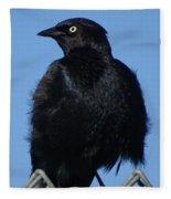 Blackbird On Chain Link Fence Fleece Blanket