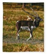 Blackbuck Fleece Blanket
