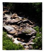 Blackwater Canyon #4 Fleece Blanket