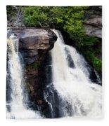 Blackwater Falls #4 Fleece Blanket