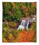 Blackwater Falls Wv Fleece Blanket