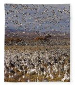 Blast Off Bosque Del Apache Fleece Blanket