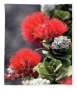 Blazing Blooms Of Ohia Flowers Fleece Blanket