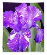 Blended Beauty - Bearded Iris Fleece Blanket