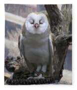Blinking Owl Fleece Blanket