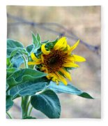 Bloom Where You Are Planted Fleece Blanket