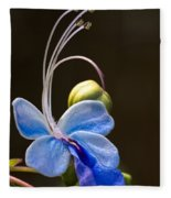 Blooming Butterfly Fleece Blanket