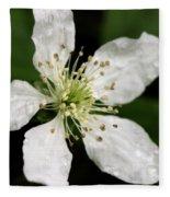 Blossom Square Fleece Blanket