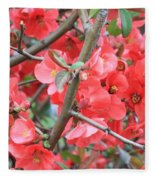 Blossoms Branches And Thorns Fleece Blanket