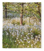 Blossoms Growing In A Fruit Orchard In Fleece Blanket