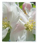 Blossoms Spring Apple Tree Art Prints Baslee Troutman Fleece Blanket