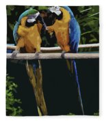 Blue And Gold Macaw 1 Fleece Blanket