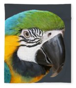 Blue And Gold Macaw Digital Freehand Painting Fleece Blanket
