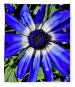 Blue And White African Daisy Fleece Blanket