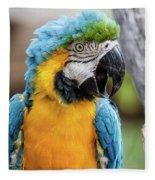 Blue And Yellow Macaw Vertical Fleece Blanket