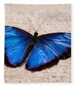 Blue Buttterfly Fleece Blanket