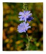 Blue Chicory 2 Fleece Blanket